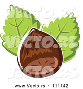 Vector of Cartoon Hazelnut and Leaves by Vector Tradition SM