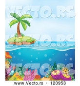 Vector of Cartoon Island and Coral Reef by Graphics RF