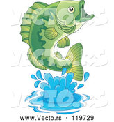 Vector of Cartoon Leaping Green Bass Fish by Visekart
