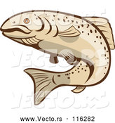 Vector of Cartoon Rainbow Trout Fish by Patrimonio
