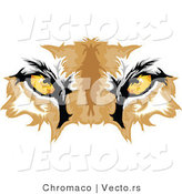 Vector of Cougar Eyes by Chromaco