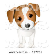 Vector of Curious Jack Russell Puppy Dog by Oligo