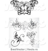 Vector of Curly Vine Floral Borders - Digital Black and White Border Design Elements Collage by BestVector