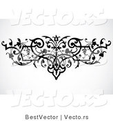 Vector of Elegant Vines Border Design Element - Black and White Version by BestVector