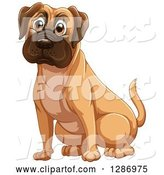 Vector of Fawn Boxer or Mastiff Dog Sitting by Graphics RF