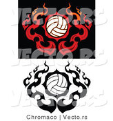 Vector of Flamed Volleyballs by Chromaco