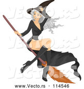 Vector of Gray Haired White Witch Lady Flying on a Broomstick by BNP Design Studio