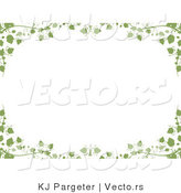 Vector of Green Ivy Vines and Leaves - Background Border Design by KJ Pargeter