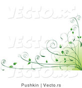 Vector of Green Organic Vines in Bottom Right Corner - Background Design Element by Pushkin