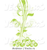 Vector of Green Vines with Circles - Border Design Element by Andresr