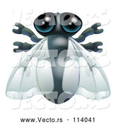 Vector of House Fly Bug by AtStockIllustration