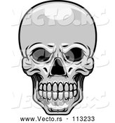 Vector of Human Skull - Grayscale Theme by Vector Tradition SM