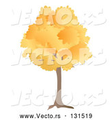 Vector of Oak Tree with Autumn Foliage Leaves in the Fall by Rasmussen Images