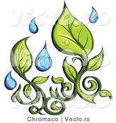 Vector of Organic Green Leaves with Fresh Rain Water Droplets by Chromaco