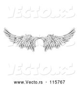 Vector of Pair of Black and White Angel or Eagle Wings by AtStockIllustration