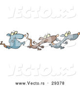 Vector of Rats Racing by Toonaday