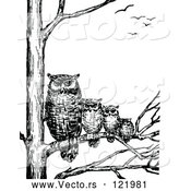 Vector of Retro Vintage Black and White Family of Owls in a Tree by Prawny Vintage