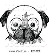 Vector of Retro Vintage Black and White Pug Dog Face by Prawny Vintage