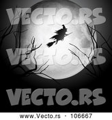 Vector of Silhouetted Witch Flying on a Broomstick over a Full Moon, with Bare Branches by KJ Pargeter