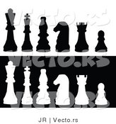 Vector of White and Black Chess Pieces by JR