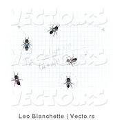 Vector of Worker Ants on Graph Paper with Calculations by Leo Blanchette