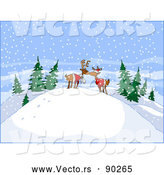Vector of Young Cartoon Reindeer Kissing on Snow Hill in the Woods by Holger Bogen