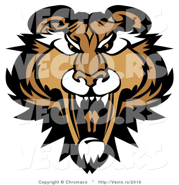 Cartoon Vector of a Growling Adult Mountain Lion Mascot Preparing to Attack