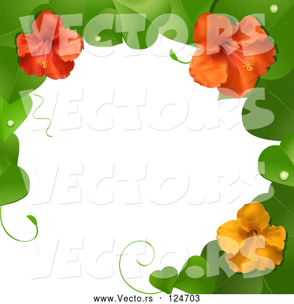 Vector of 3d Hibiscus Flower and Leaves Border