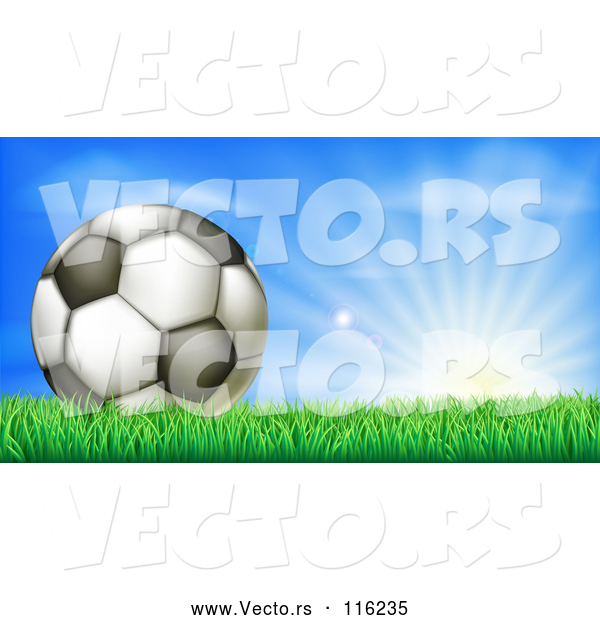 Vector of 3d Soccer Ball in Grass at Sunrise