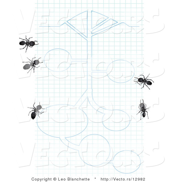 Vector of 5 Black Ants on Graph Paper with Blueprint Drawings