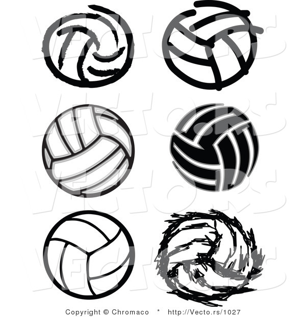 Vector of 6 Unique Volleyballs - Black and White