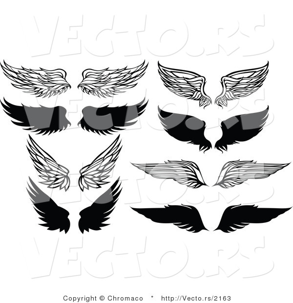 Vector of 8 Unique Feathered Wings - Black and White Designs