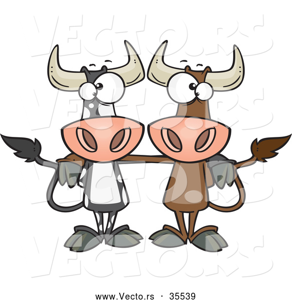 Vector of a 2 Cartoon Bull Cows Posing Together