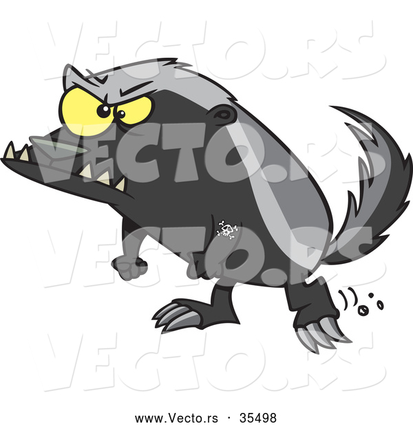 Vector of a Angry Cartoon Honey Badger Ready to Fight