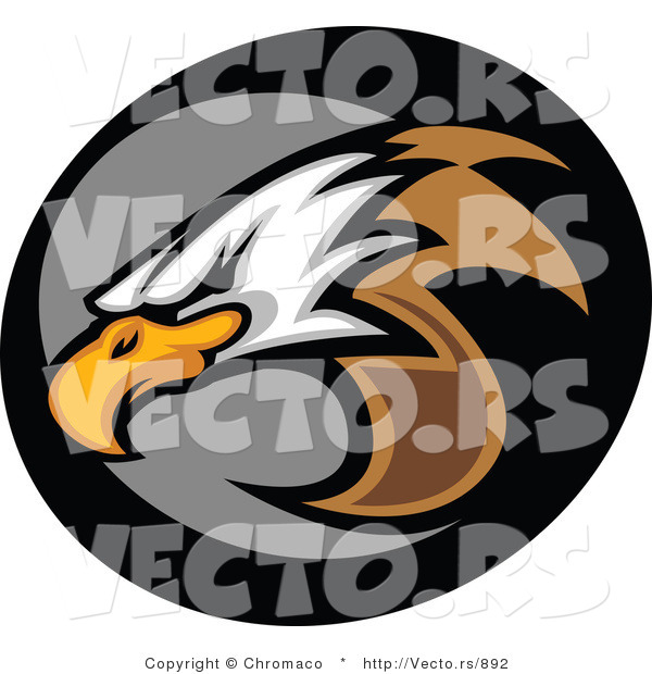 Vector of a Bald Eagle Icon