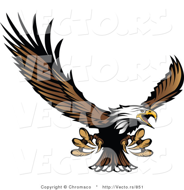 Vector of a Bald Eagle Reaching out with Claws While Flying