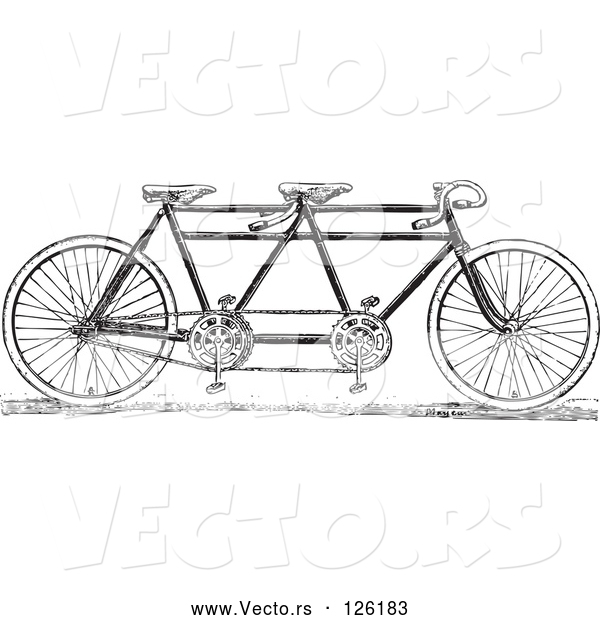Vector of a Black and White Tandem Bicycle
