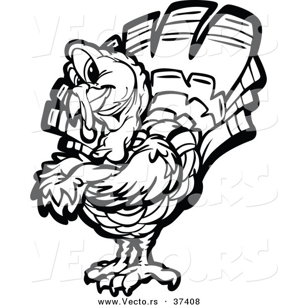 Vector of a Black and White Turkey Mascot with Folded Arms - Line Art