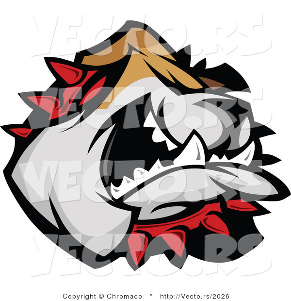 Vector of a Bulldog Wearing Red Spike Coller While Attacking
