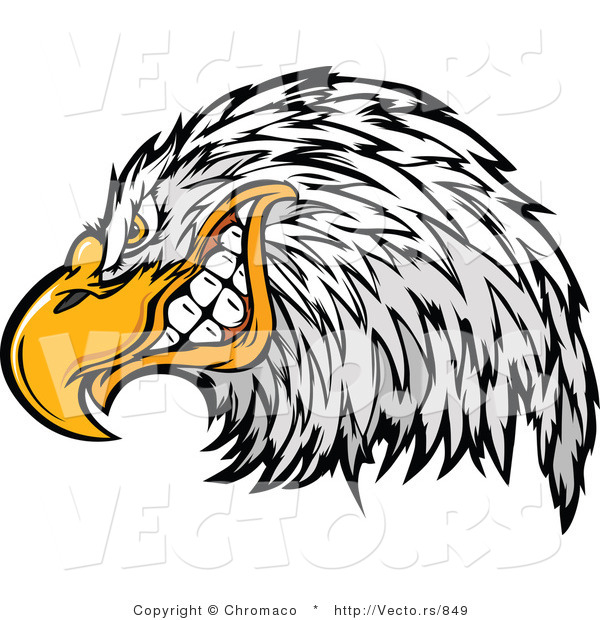 Vector of a Cartoon Bald Eagle Mascot Grinning