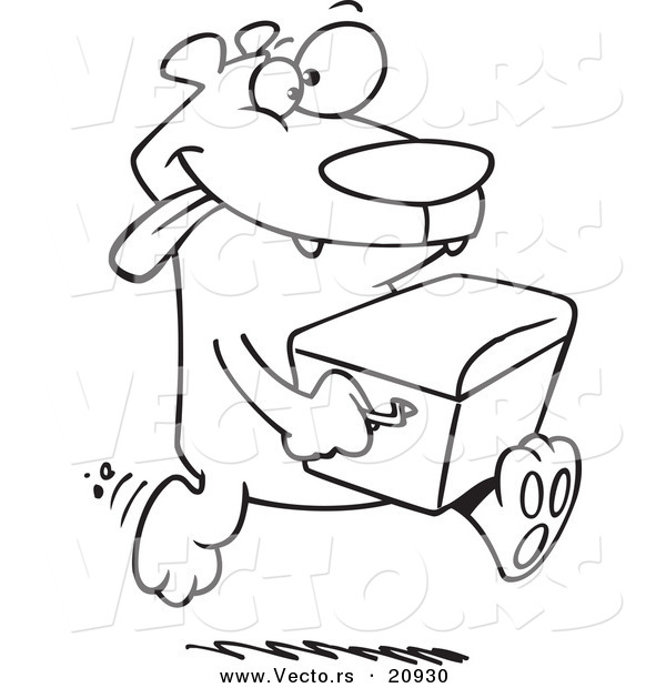 Vector of a Cartoon Bear Stealing a Cooler - Coloring Page Outline