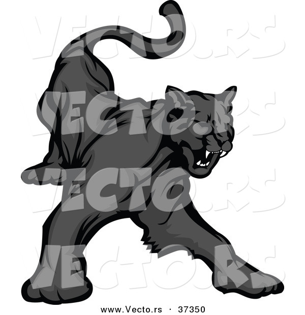 Vector of a Cartoon Black Panther Growling