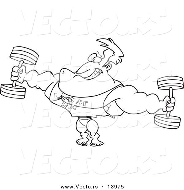 Vector of a Cartoon Bodybuilder Wearing a Look at Me Shirt and Lifting Weights - Coloring Page Outline