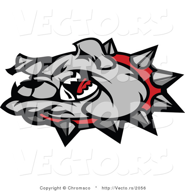 Vector of a Cartoon Bulldog Wearing Spike Collar While Growling
