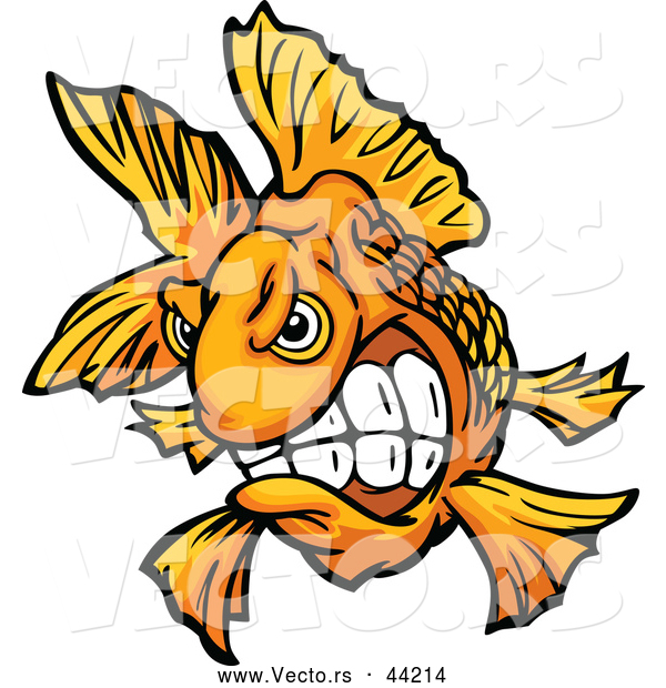 Vector of a Cartoon Fighter Goldfish with Teeth