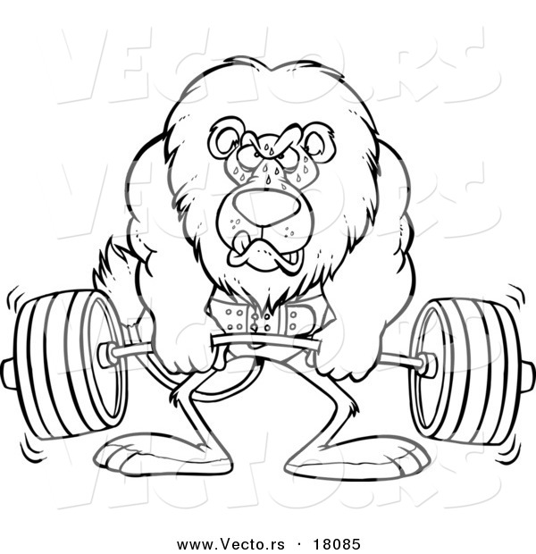 Vector of a Cartoon Lion Weightlifting - Outlined Coloring Page