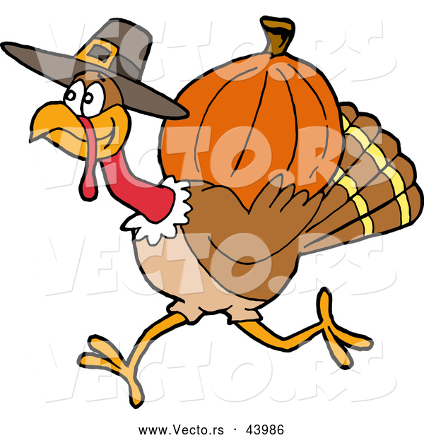 Vector of a Cartoon Pilgrim Turkey Carrying a Pumpkin for Thanksgiving