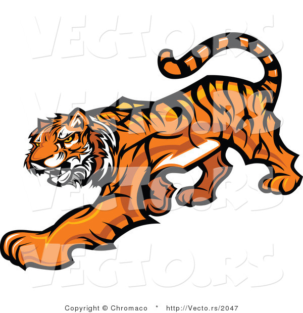 Vector of a Cartoon Tiger Slowly Stalking
