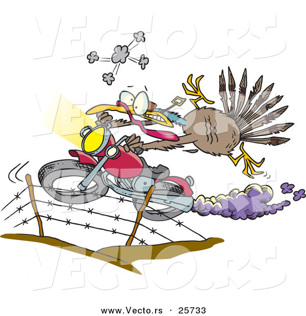 Vector of a Cartoon Turkey Jumping over Fence on a Motorcycle