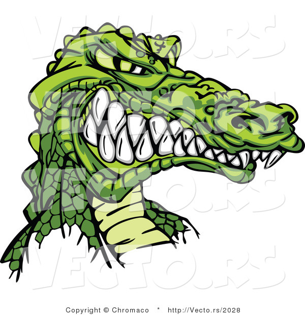 Vector of a Competitive Cartoon Alligator Mascot Grinning with Intimidating Eyes